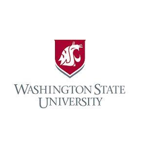 Washington State University Seattle