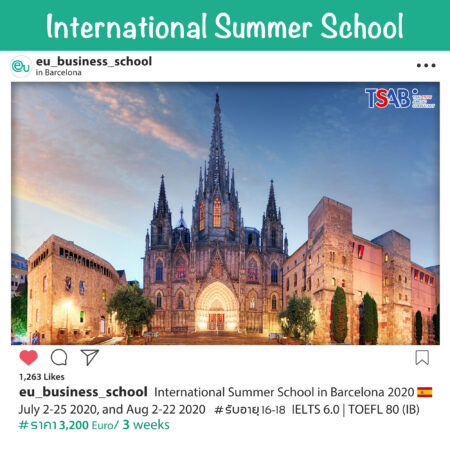 Summer School in Barcelona 2020